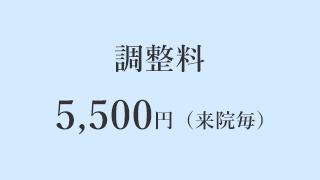 調整料 5,500円(来院毎)